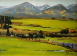 "Colorado FrameSmith Award #3""Afternoon Light"" by Jeanene Parker"