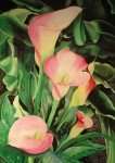 "2nd Place ""Jewels of Summer"" watercolor by Lois J. Olson"