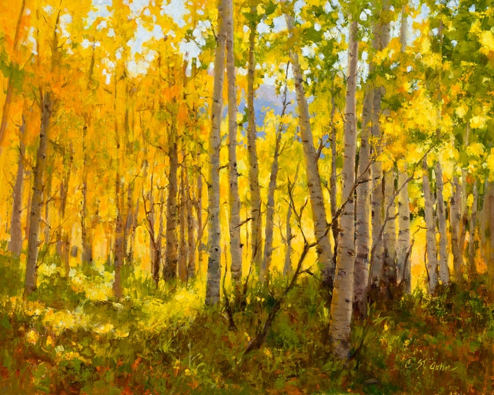 Oil painting of autumn colored aspens